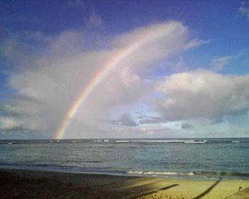 rainbow_med.jpg