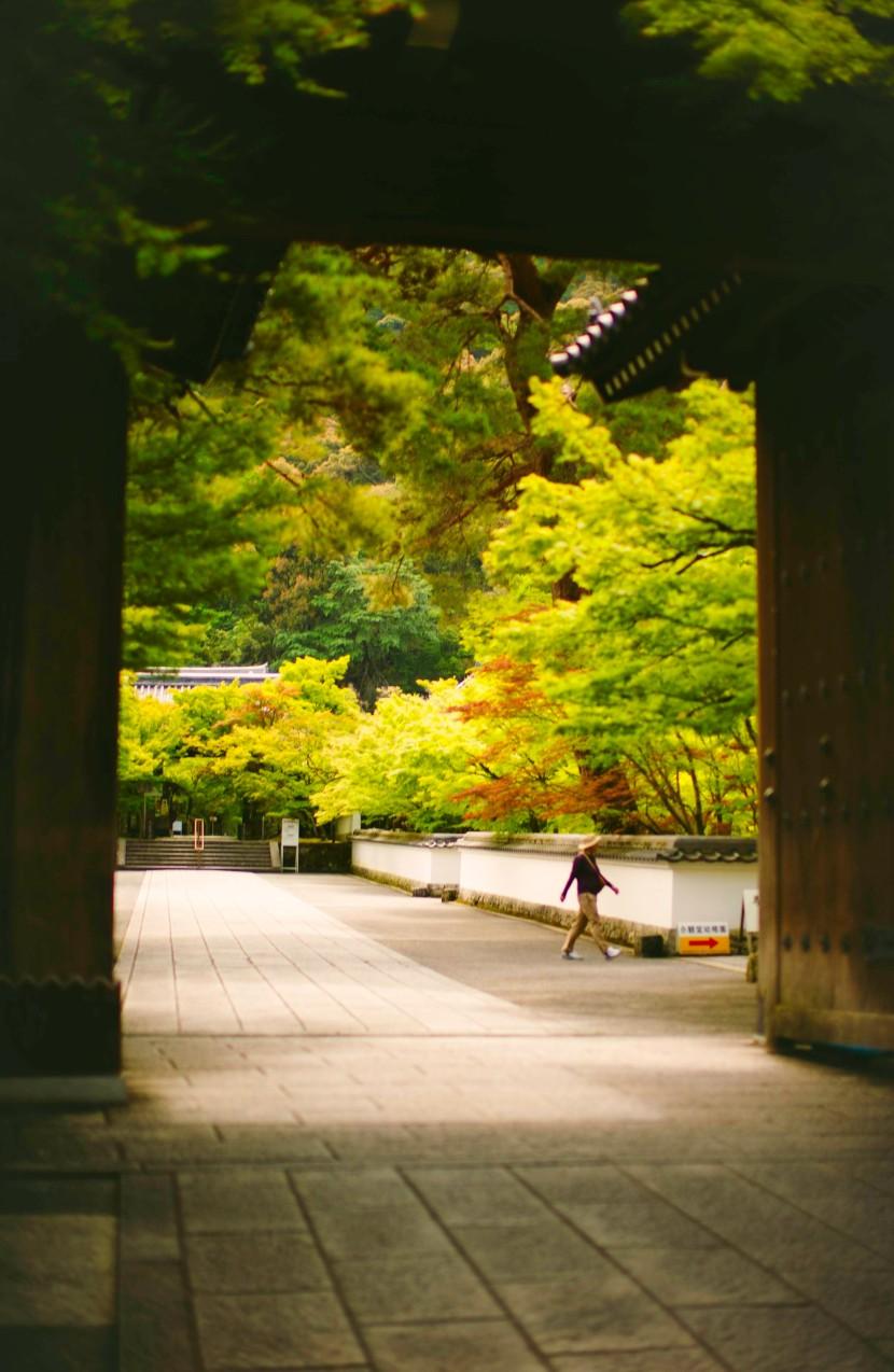 kyoto_june_2019_0078